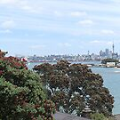 Auckland through the trees........!! by Roy  Massicks