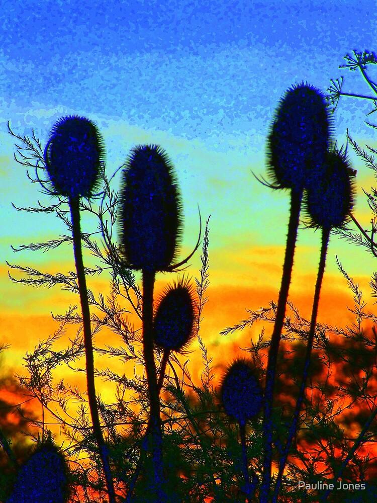 Early Dawn by Pauline Jones