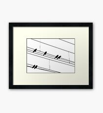 Rook Silhouettes Framed Print
