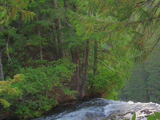 Waters peaceful Edge by bevg