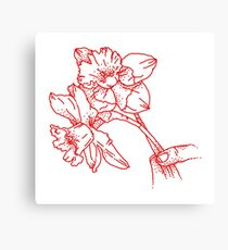 red daffodils  Canvas Print