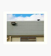 raven on roof Art Print