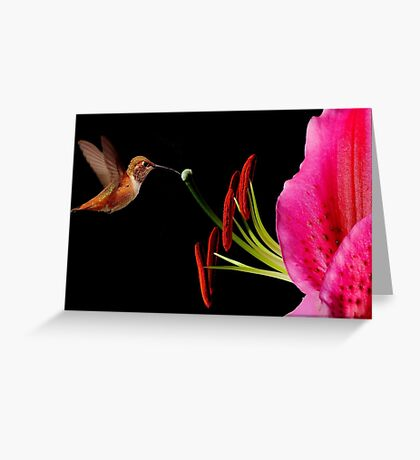 SWEET NECTAR~ Greeting Card