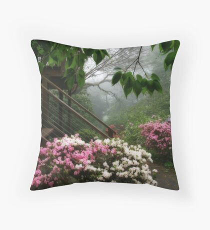 The side stairs Throw Pillow