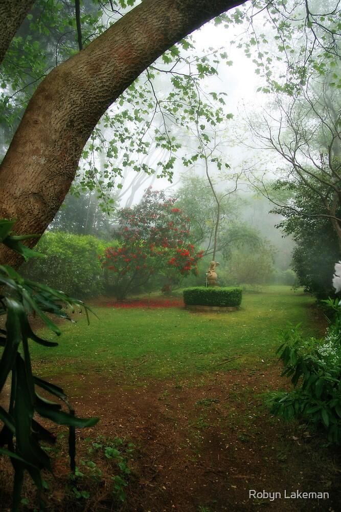 Misty garden by Robyn Lakeman