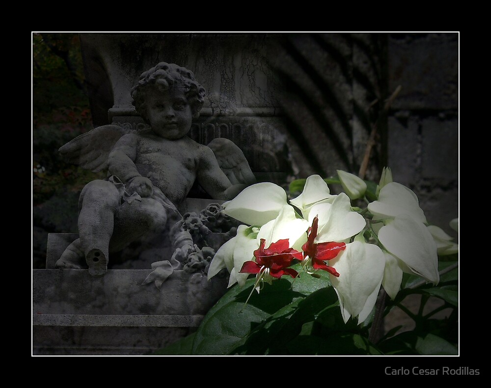 Remembering Love Ones (The Distant Angel) by Carlo Cesar Rodillas