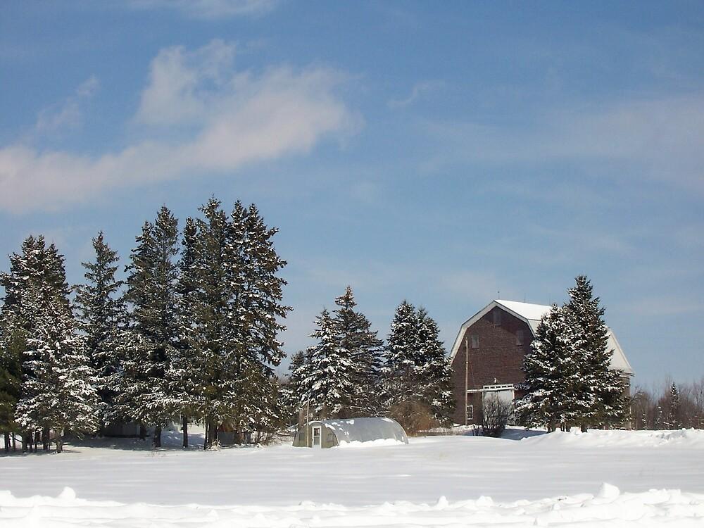 Winter Farm by Gene Cyr