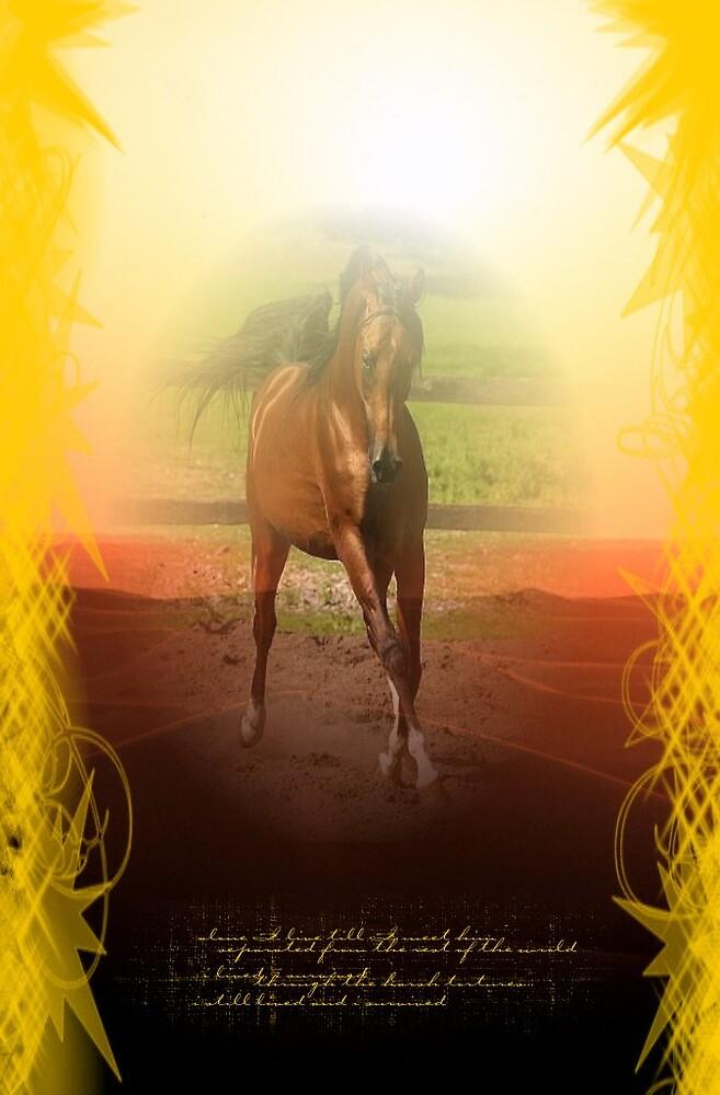 Arabian by limouche