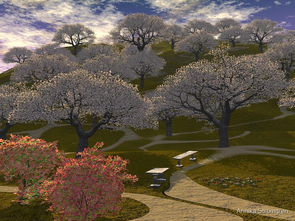 Cherry tree hill by Annika Strömgren