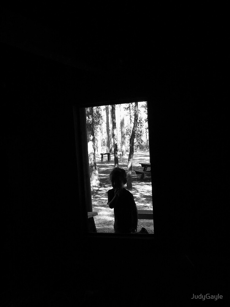 The Shadow In the Window by Judy Gayle Waller
