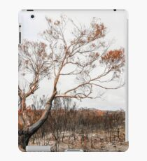 Path of Destruction - Tasmania iPad Case/Skin