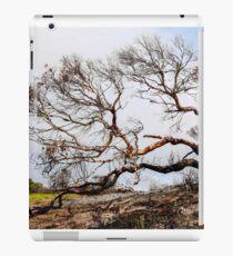 Beauty in Destruction - Tasmania iPad Case/Skin