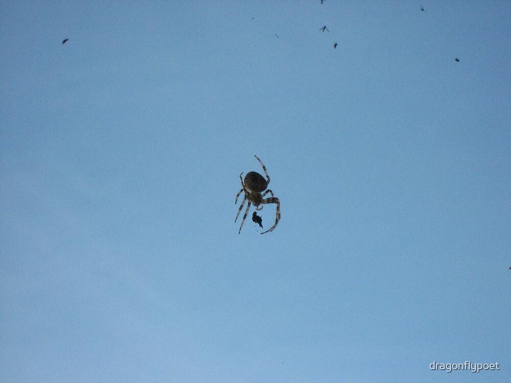 Morning Task by dragonflypoet