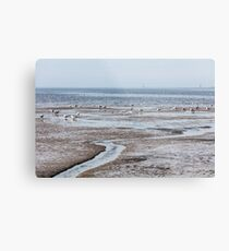 expanse of seagulls on the beach by the sea Metal Print