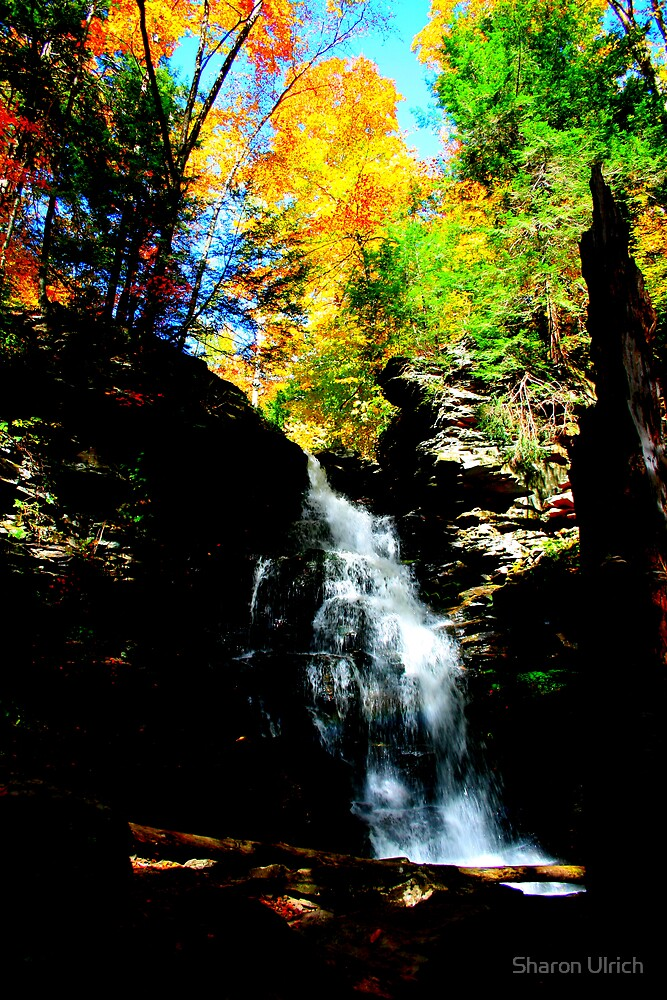 Falls in Fall by Sharon Ulrich
