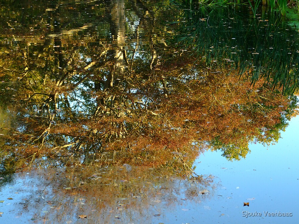 Autumn tree reflection by Sjouke Veenbaas