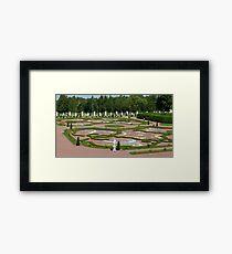 view on a regular garden Framed Print