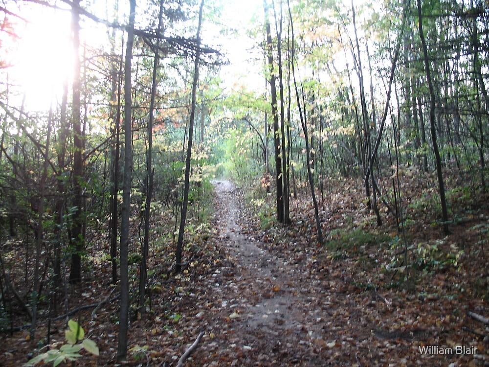 Fall Path by William Blair