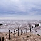 Beach by Ashley Beolens