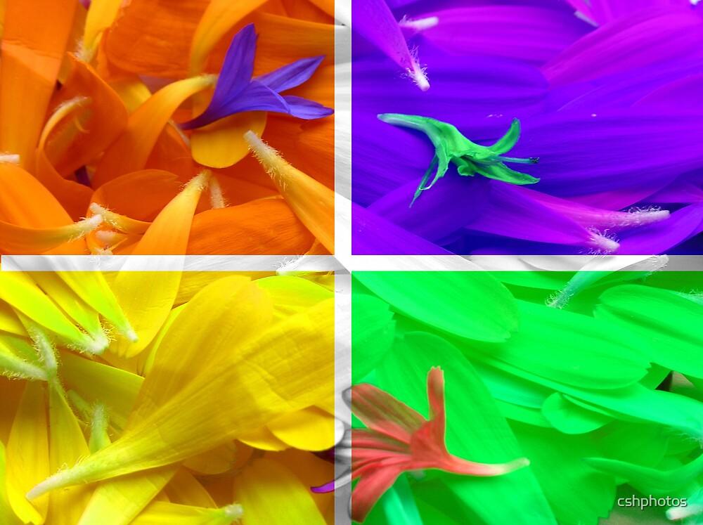 Floral Pop Art by cshphotos