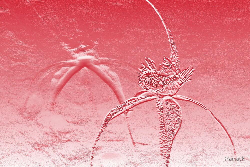 spider dreams by Ramack