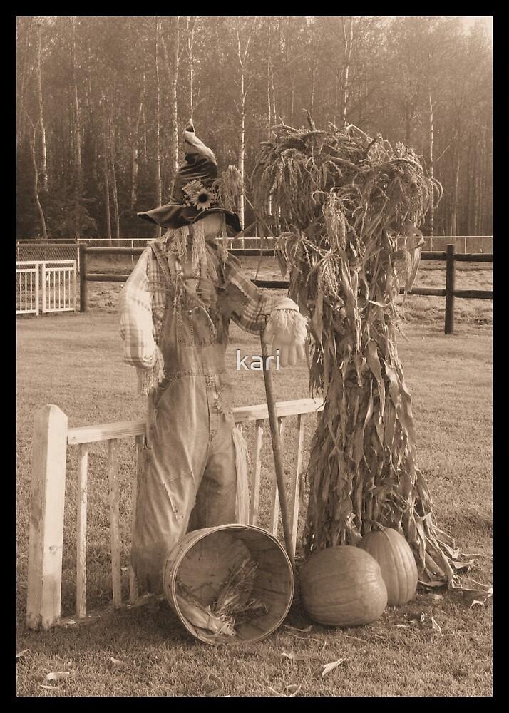 Scarecrow by kari