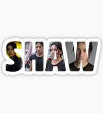 SHAW - Person of Interest Sticker