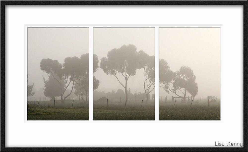 Foggy Mornings... by Lisa Kenny