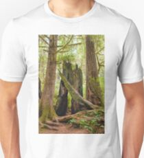 Ancient Forest Unisex T-Shirt