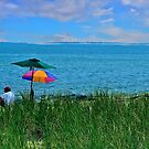 Midsummer Dream by Nancy Richard