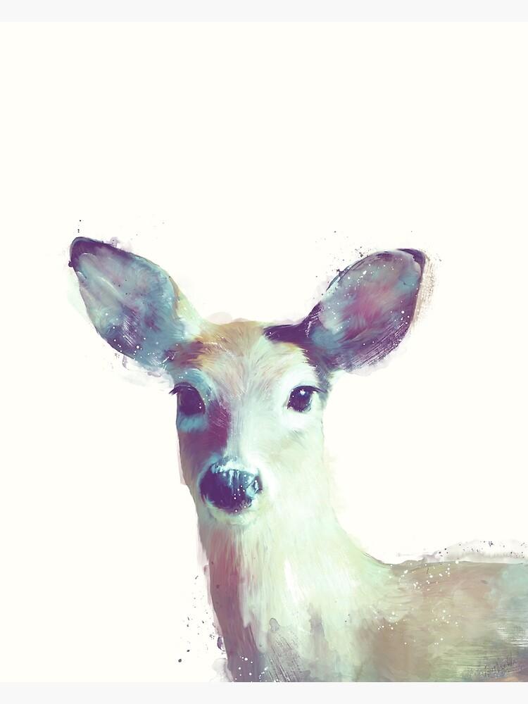 Whitetail No. 1 by AmyHamilton