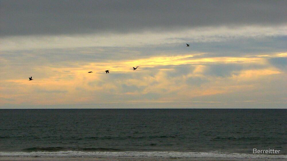 Sunset Flight by Berreitter