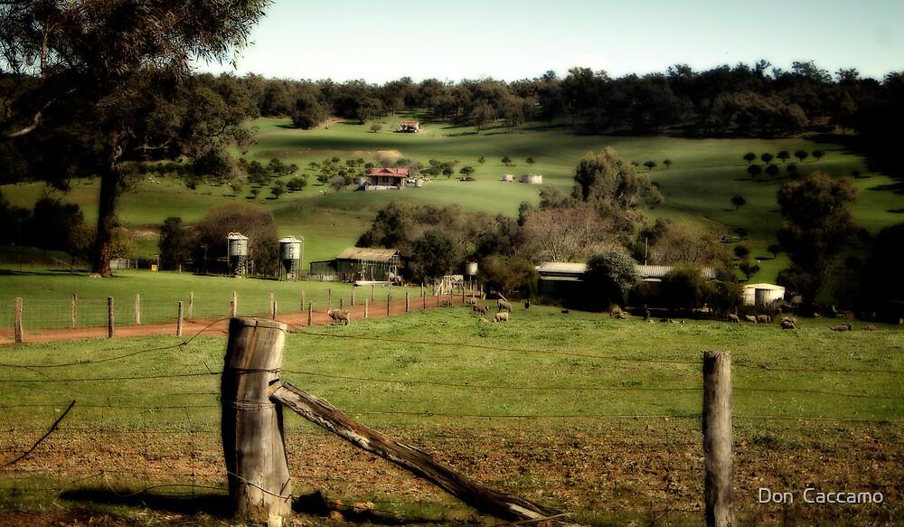 The Farm by Don  Caccamo