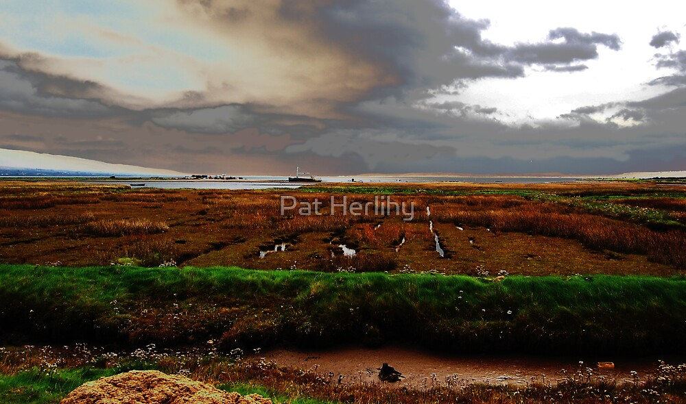 Modified Sea Shore - Dingle Bay by Pat Herlihy