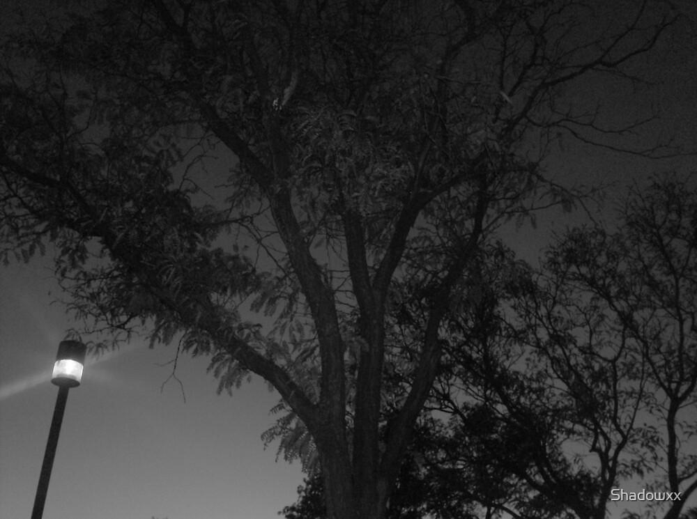 Dark by Shadowxx