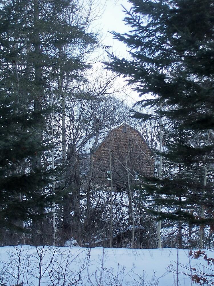 Barn In Winter by Gene Cyr