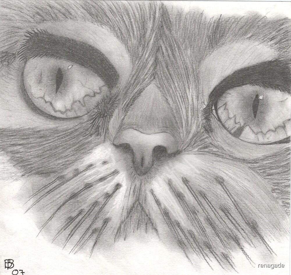 cat by renagade