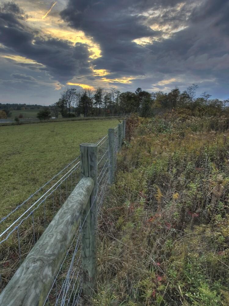 Brush Fence Blues by David Linkenauger