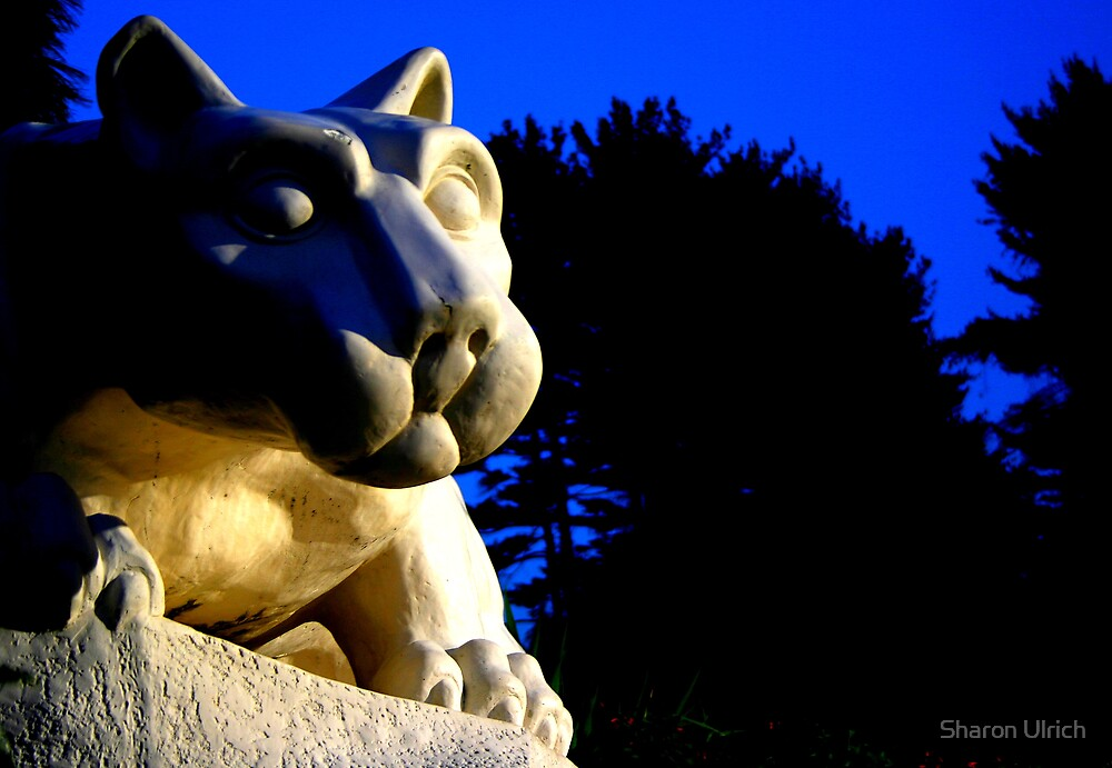 Berks Lion by Sharon Ulrich