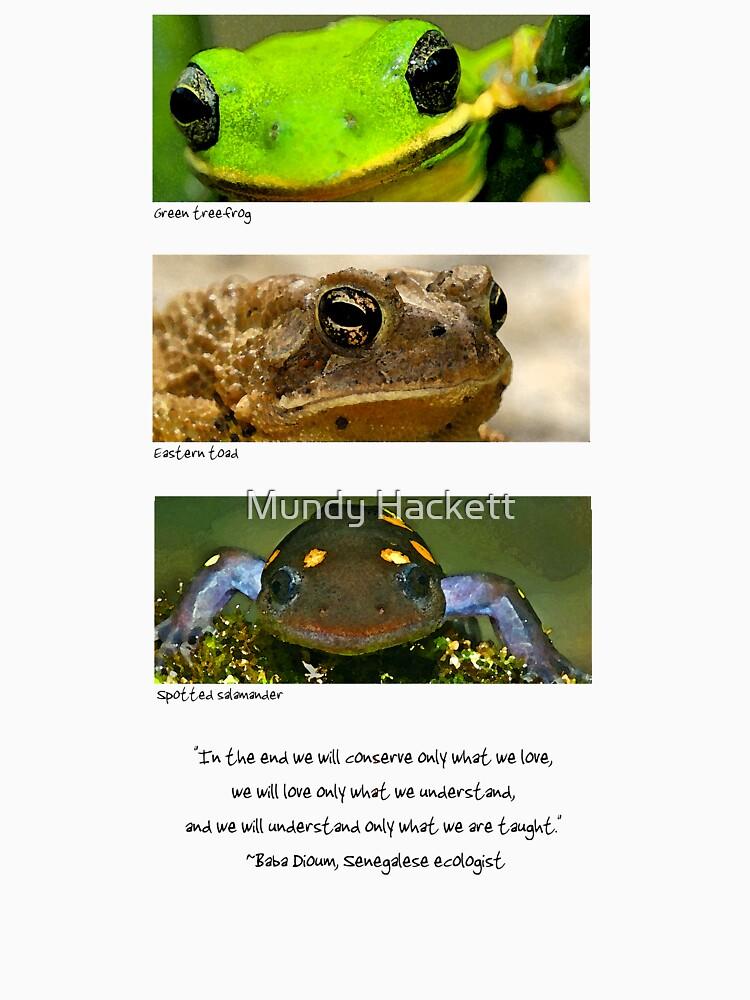 Amphibian conservation by mhackett