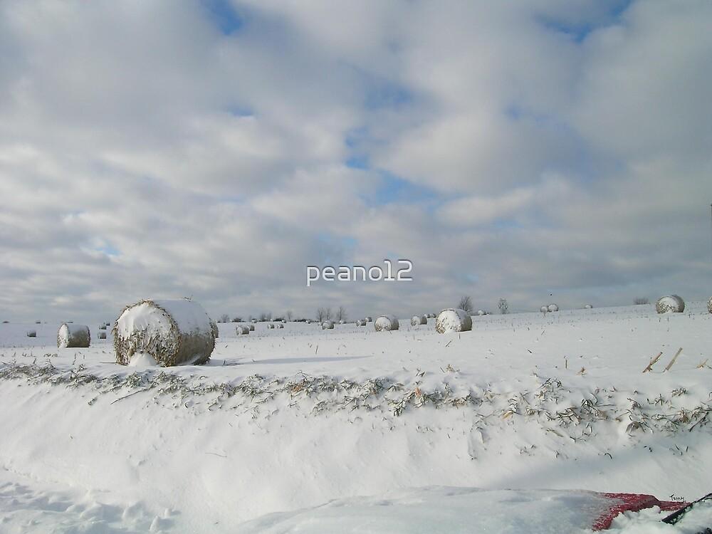 Snow field by peano12