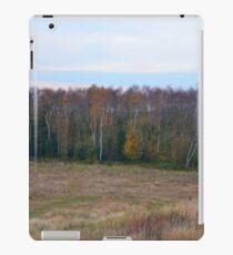 Autumn Colours.. iPad Case/Skin