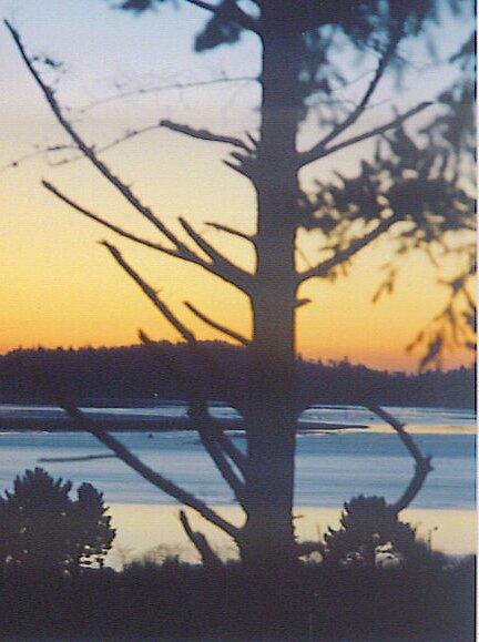 OceansLight at Twilight by Arlita Marie Moles
