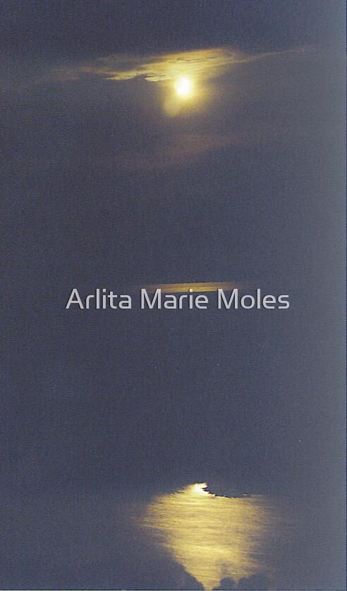 Moon Over Siuslaw by Arlita Marie Moles