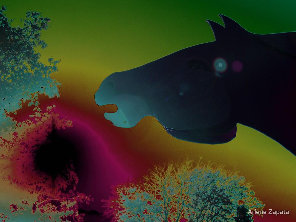 Solar Horse Dream by Arlene Zapata