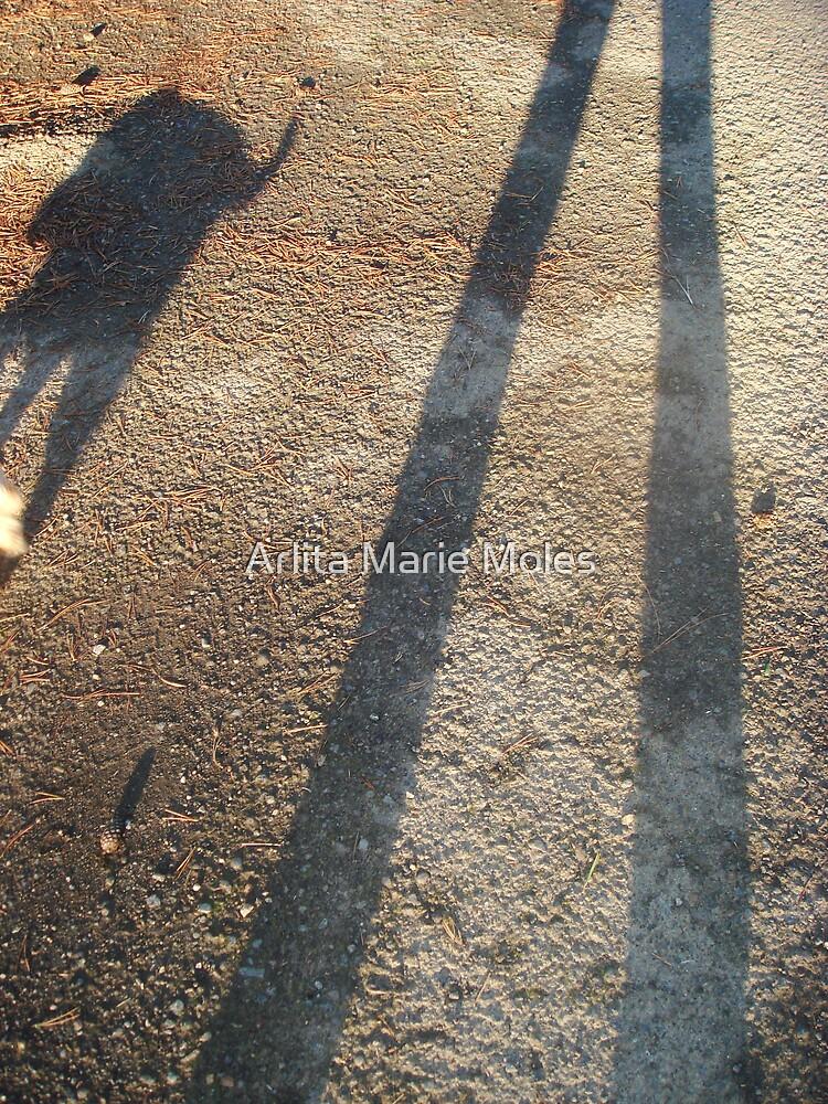 Silhouetted Mans Best Friend by Arlita Marie Moles