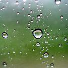 raindrops... by Wieslaw Jan Syposz