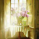 Springtime In My Window  by gigikiersten