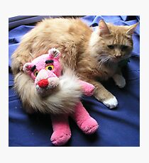 Cat with Toy Photographic Print