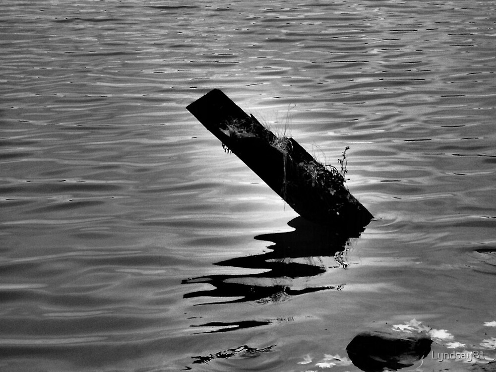 Log in the Water  by Lyndsay81
